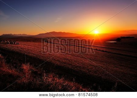 Sunrise over cultivated farmland (Cape Province - South Africa)
