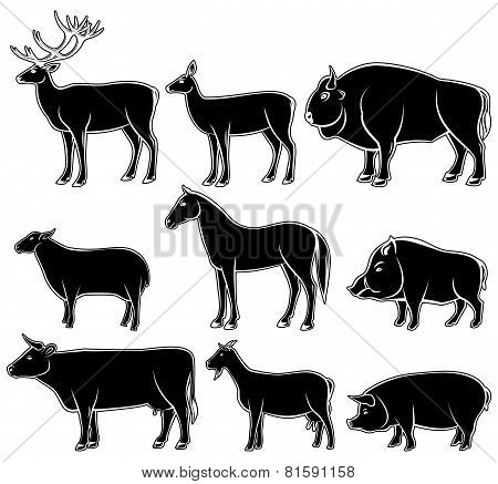 Set Of Monochrome Wild And Domestic Animals