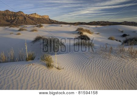 Salt Basin Dunes in Guadalupe Mountains National Park
