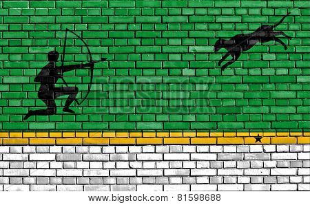 flag of Amazonas Department painted on brick wall