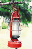 image of kerosene lamp  - Kerosene lamp hanging on fir tree - JPG