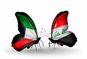 stock photo of iraq  - Two butterflies with flags on wings as symbol of relations Kuwait and Iraq - JPG