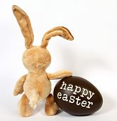 picture of easter eggs bunny  - The Easter Bunny with Egg with the inscription - JPG
