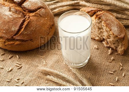 Glass Of Milk On Background Ears Rye And Bread.