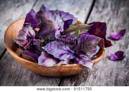 Beam Of Purple Basil In The Bowl