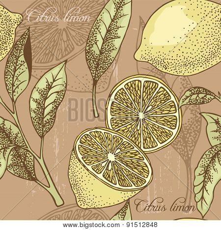 Vintage Lemon Seamless Background