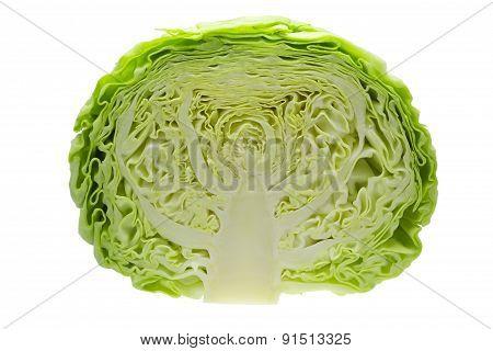 Cabbage Cut In Half