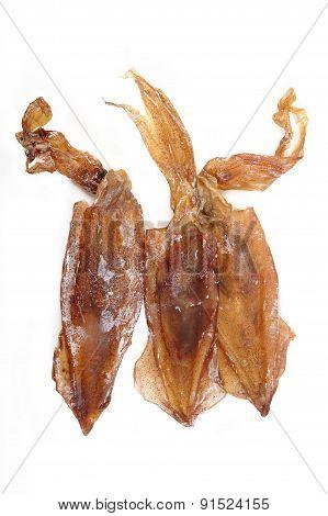 Dried Squid On White