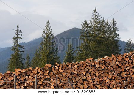 Harvested wood. Rural view in the mountains