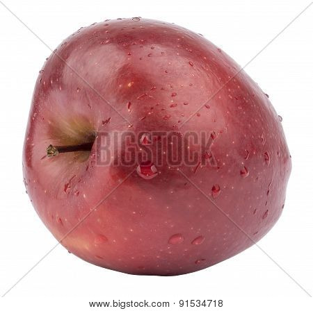 Red apple with twig