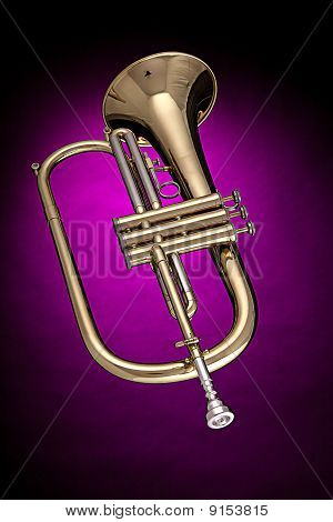Flugelhorn Trumpet Isolated On Pink
