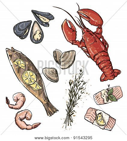Seafood selection. Vector illustration.