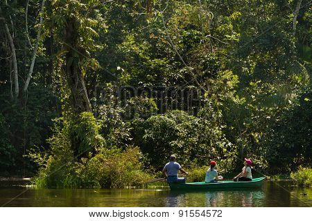 Unidentified tourists paddling a canoe in the amazon rainforest, Yasuni National Park, Ecuador