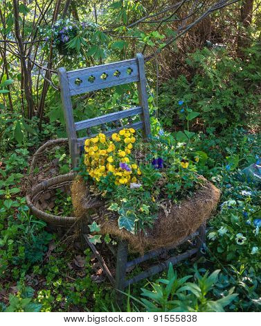 flowers in chair seat planter