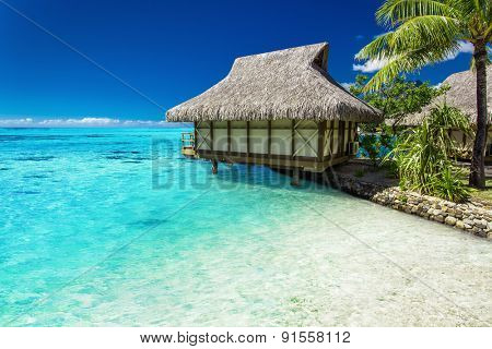 Tropical bungalow and palm tree next to amazing blue lagoon on the island