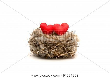 Two Red Hearts In The Nest