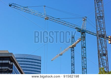 Multiple construction cranes work side by side.