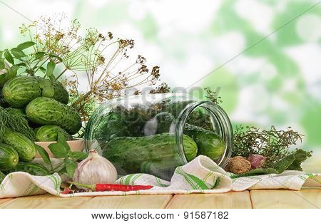 Cucumbers for marinate with dill