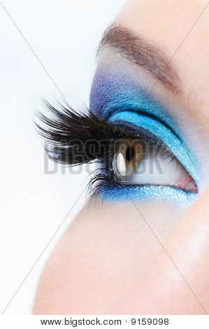 Female Eye With Bright Blue  Make-up