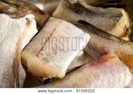 Fish, Walleye Pollock, Alaska Pollock