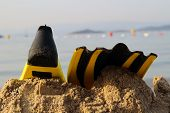 foto of flipper  - yellow and black colored flipper over the sands - JPG