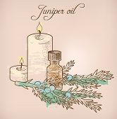 picture of juniper-tree  - Illustration of juniper essential oil and candles - JPG
