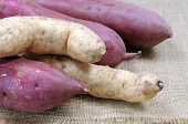 stock photo of root-crops  - sweet potato root on burlap table at market place - JPG