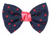 pic of bow tie hair  - Hair bow tie blue with pink dots - JPG