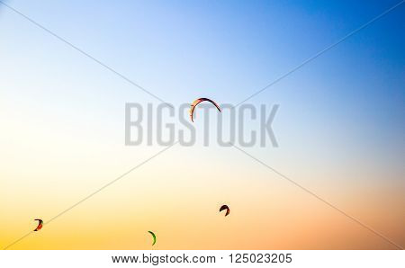 paraglider flying over a beach in Dubai
