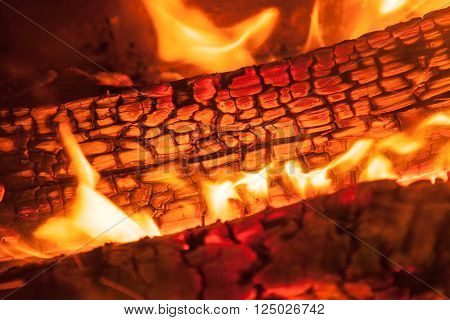 Burning piece of wood in fireplace close-up