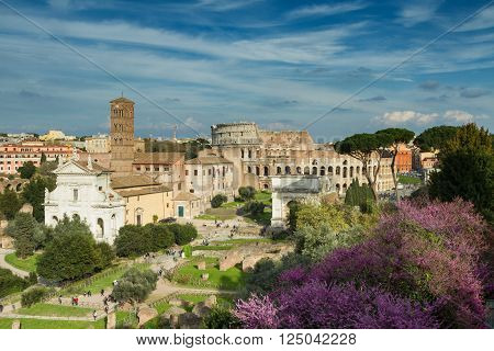 View of the Forum Romanum towards the coliseum Rome Italy