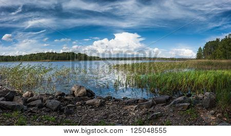 Natural panorama north landscape - Ladoga lake with stony lake shore with green reeds under blue sky with white clouds panoramic view
