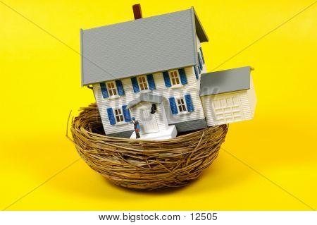 Homeowner 3