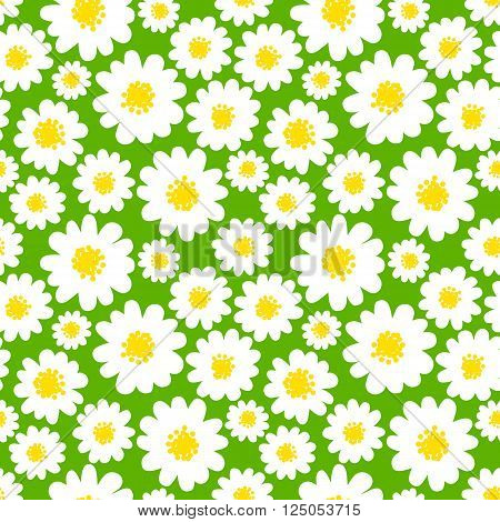 White daisies seamless pattern on a green background. Daisy field