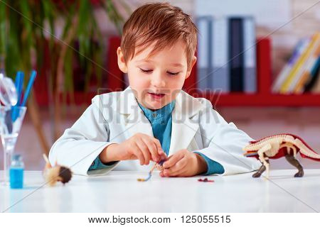 Cute Kid, Boy Discover The Internal Organs And Body Of An Animal