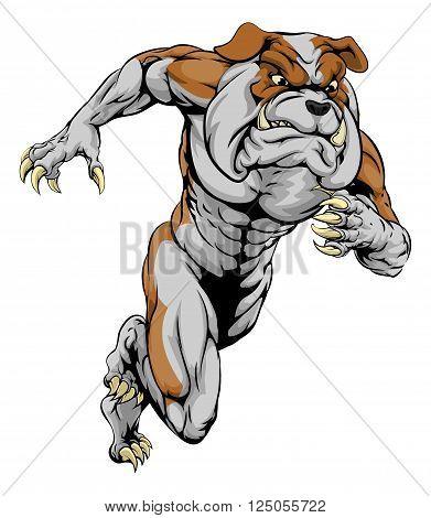 Bulldog Sports Mascot Running