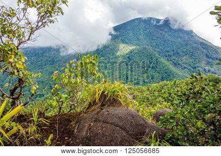 Morne Seychellois National Park in Mahe Seychelles main island