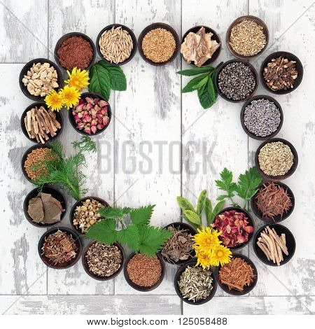 Healing herb selection for women used in natural herbal medicine over distressed wooden background.