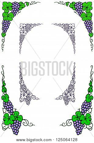 graphic illustration of grapes and leaves in an oval frame