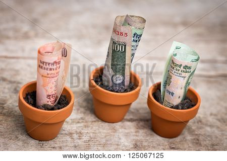 indian bank notes rupee concept growth wooden background