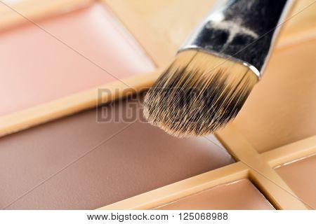 Brush for concealer and a palette of concealer.