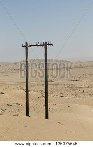 old power pole in the desert near Kolmanskop Namibia