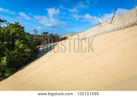 Great Dune of Pyla the tallest sand dune in Europe Arcachon bay France