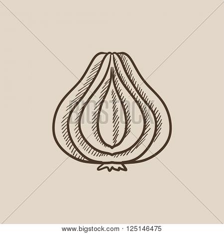 Garlic sketch icon.