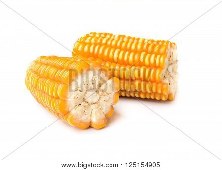 Dried Corn Seed.