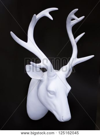 Stag's Head Antlers On Wall