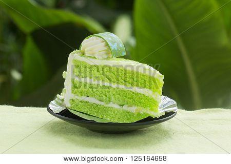 Pandan cake on the garden background / Thai style cake