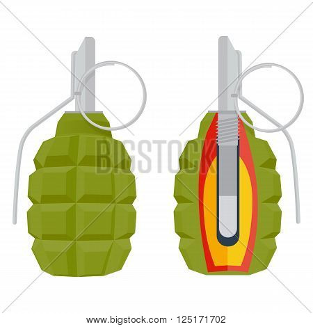 hand grenade vector illustration. grenade isolated on white background