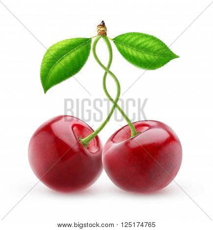Two Isolated Sweet Cherries With Intertwined Stems