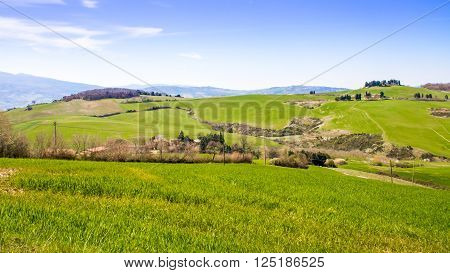 Panoramic view of the Tuscan coutryside in Italy